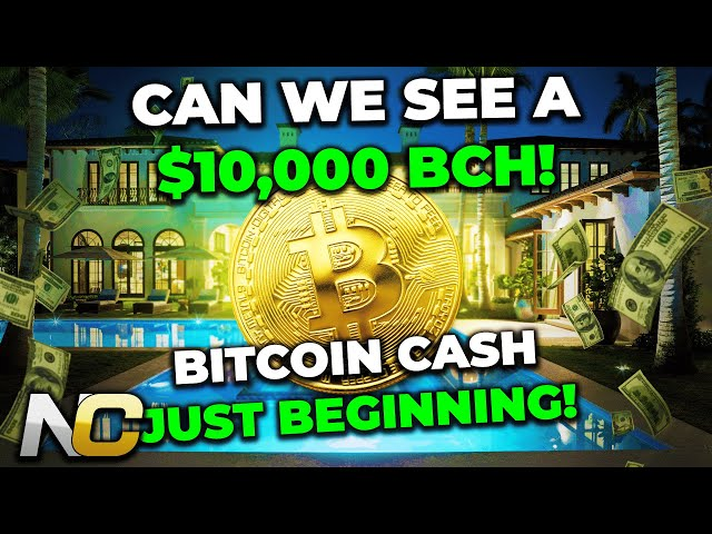 WILL BCH HIT $10K THIS BULL RUN? | BITCOIN CASH JUST BEGI… #BitcoinCash #BCH