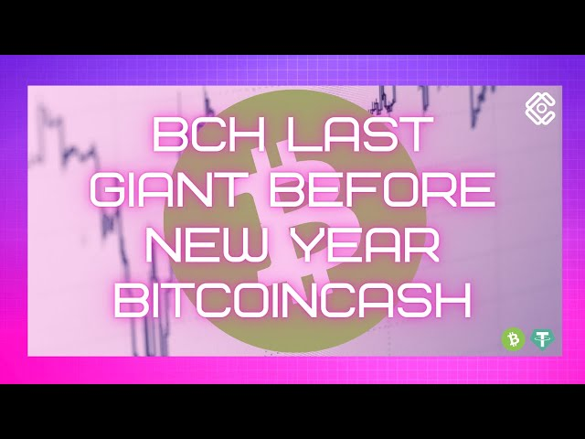 BCH LAST GIANT BEFORE NEW YEAR | BITCOINCASH crypto tradi… #BitcoinCash #BCH
