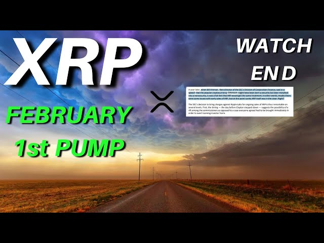 MY BEST VIDEO THIS MONTH for Ripple XRP Price & FEBRU… #Ripple #XRP