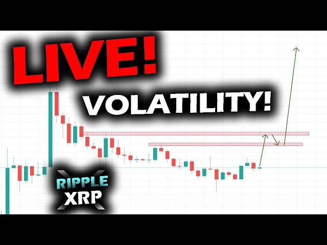 #Ripple #XRP BUSY DAY IN MARKETS! Review of RIPPLE XRP PRICE CHART, Bitcoin and Altcoins