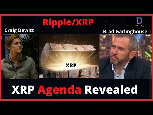 #Ripple #XRP Ripple/XRP-Brad Garlinghouse & Ripple Executive Reveal XRP Agenda!