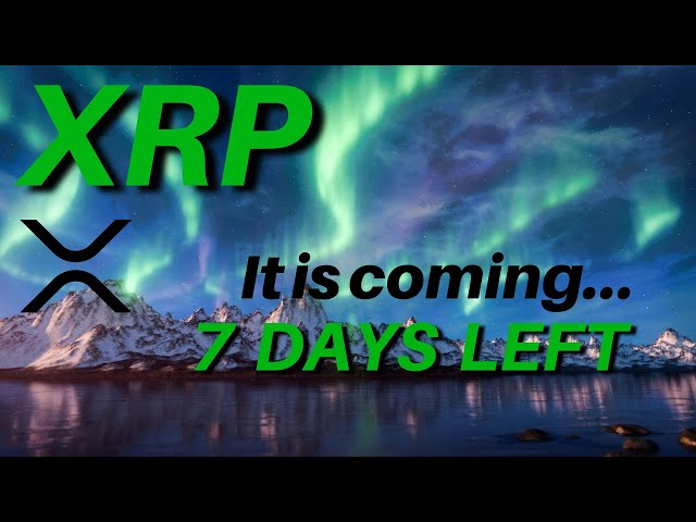 IT IS COMING for RIPPLE/XRP Price End of Year DECISION TIME
