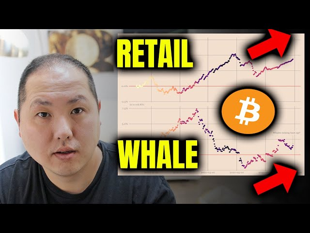 PAY ATTENTION TO WHO IS BUYING BITCOIN #bitcoin #btc #blockchain