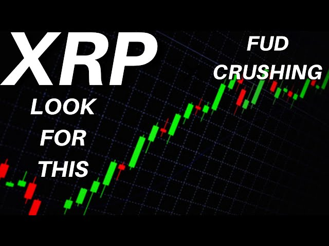 *Ripple XRP* WHAT TO REALLY LOOK FOR, FUD CRUSHING, Bans, ODL Usage