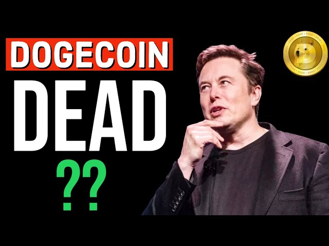 WHAT IS GOING ON? DOGE IS DEAD? LATEST NEWS UPD… #doge #dogecoin #blockchain