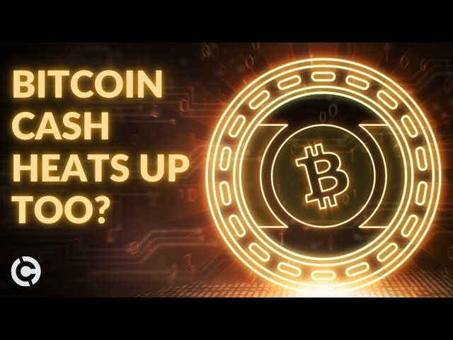 #BitcoinCash #BCH Bitcoin Cash Price Analysis December | More Upside for BCH?