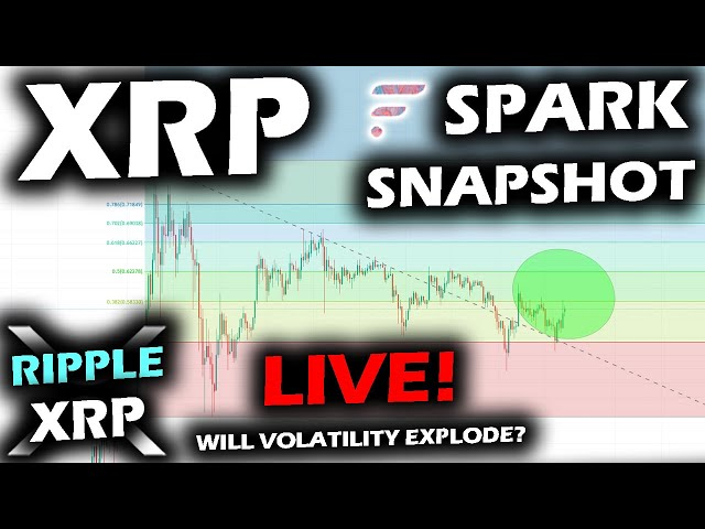 SNAPSHOT IS HAPPENING NOW for the SPARK Airdrop LIVE Watch of the RIPPLE XRP PRICE CHART
