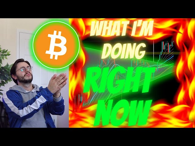 THIS BITCOIN VIDEO IS LITERALLY MIND-MELTING!!!!! [don't … #Bitcoin #BTC
